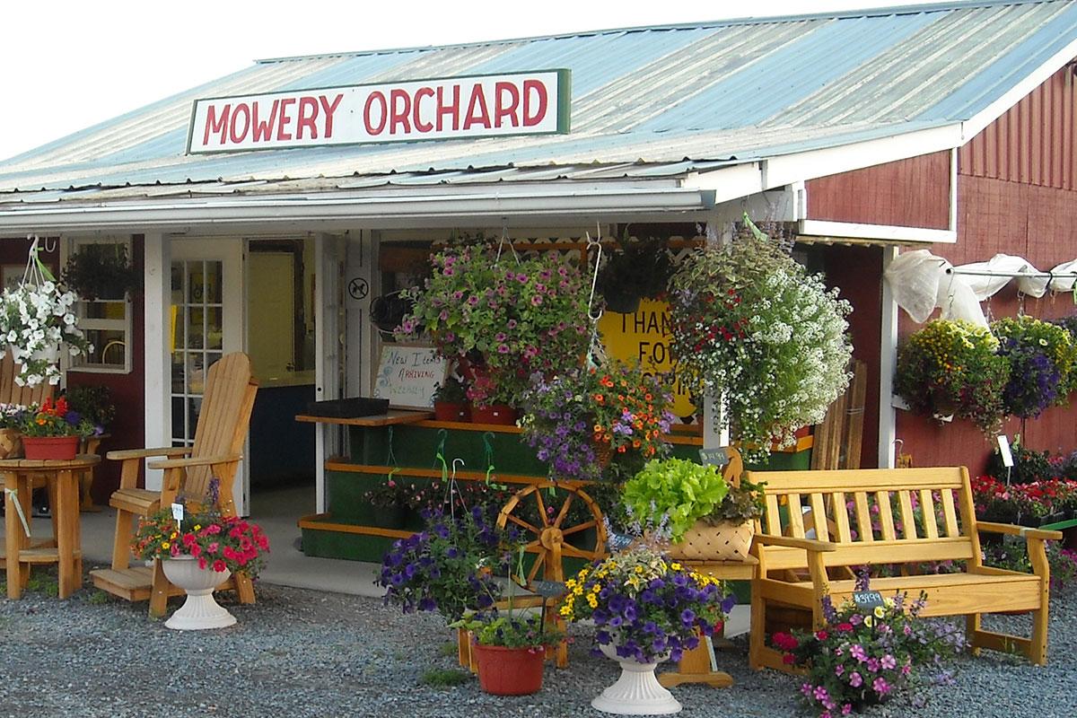Mowery Orchard