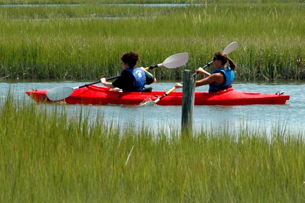 kayaking in marsh