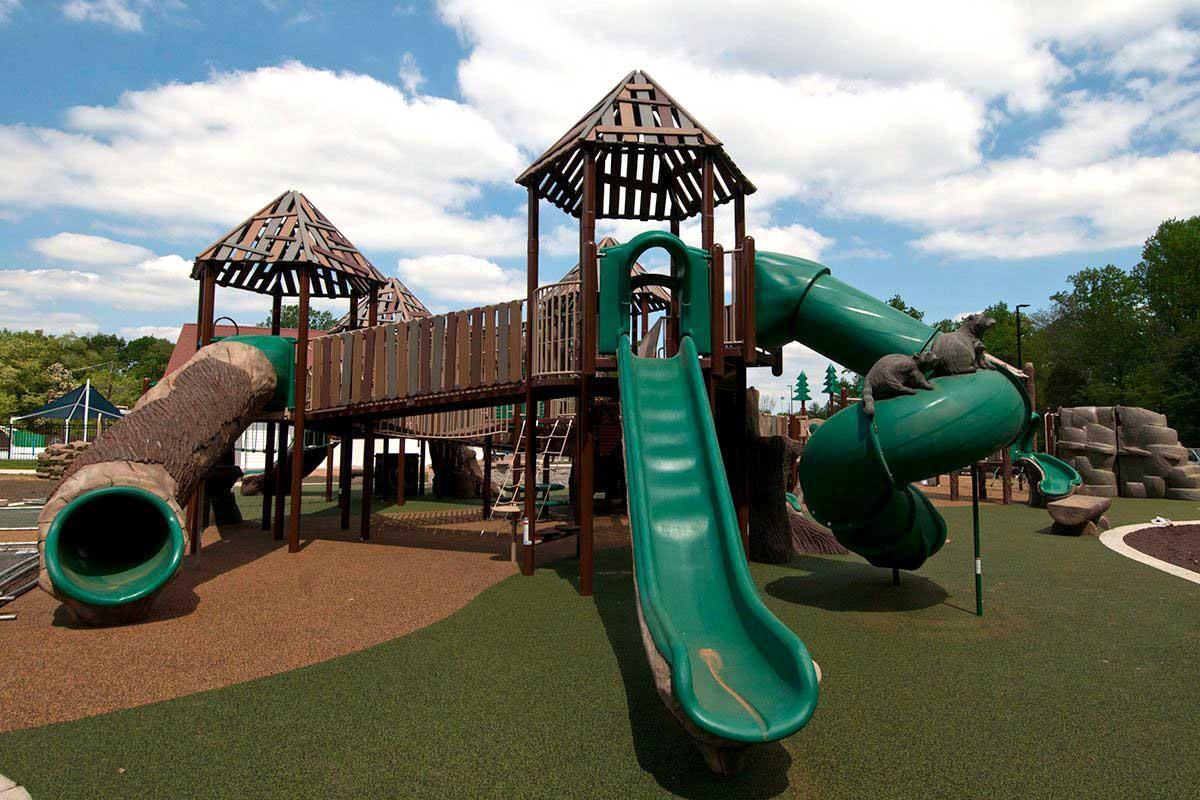 Chessie's playground